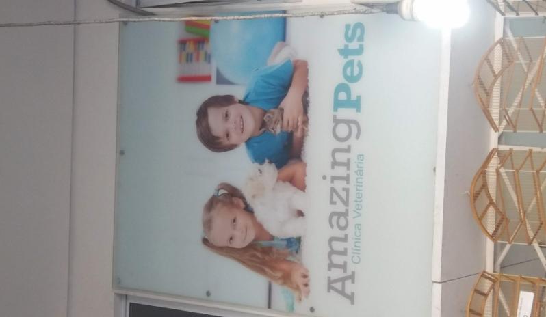 Clínica Veterinária Santa Maria - Clínica Veterinária para Animais Domésticos