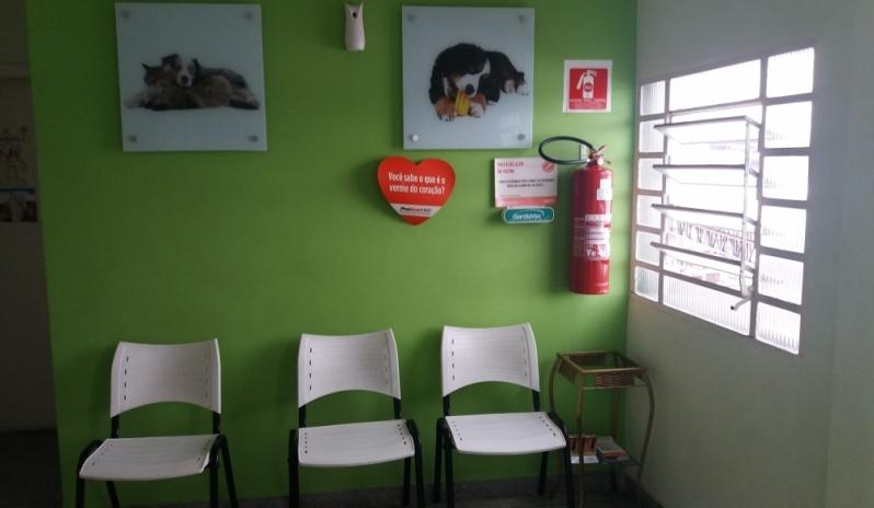 Onde Tem Clínica Veterinária para Cães Vila Yara - Clínica Veterinária para Aves