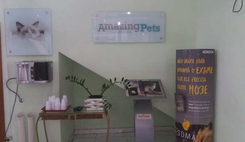Onde Tem Clínica Veterinária Adalgisa - Clínica Veterinária para Animais Domésticos