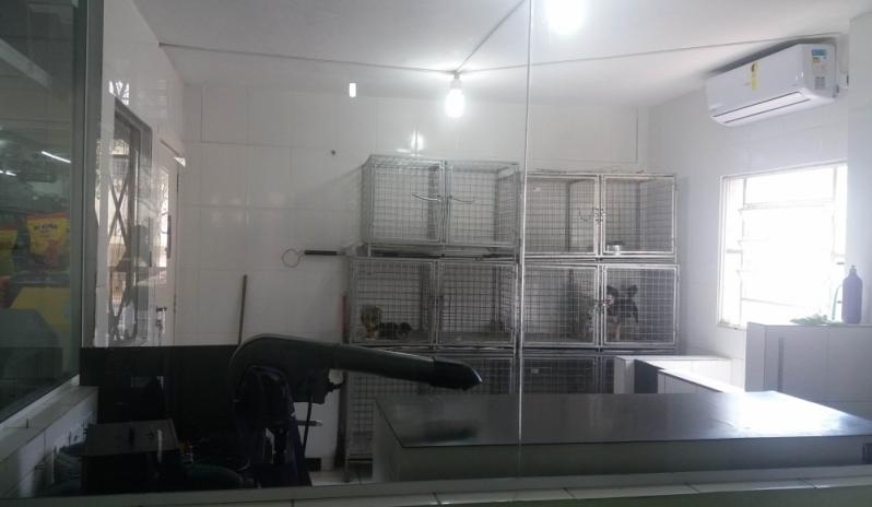 Preço de Banho e Tosa e Pet Shop Cipava - Banho e Tosa Delivery