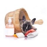 banho e tosa para cachorro Bela Vista