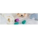 clínica de exame laboratorial de animais Jardim D'Abril