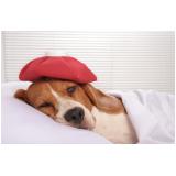 clínica para vacina giardíase canina Santa Maria