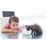 clínica veterinária para animais domésticos melhor preço km 18