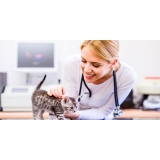 clínica veterinária para animais domésticos Vila São Francisco