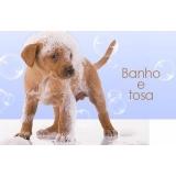 onde fazer banho e tosa para cachorros Jardim Veloso