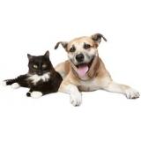 onde fazer exames laboratoriais para animais domésticos Vila Osasco