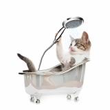 preço de banho e tosa para gatos Jardim D'Abril