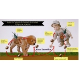 vacina giardíase canina